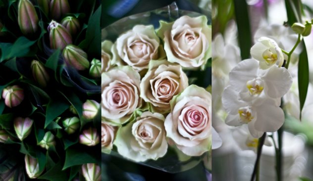 blomster_20caffen_009.JPG