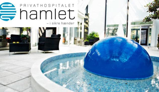Hamlet_002.jpg
