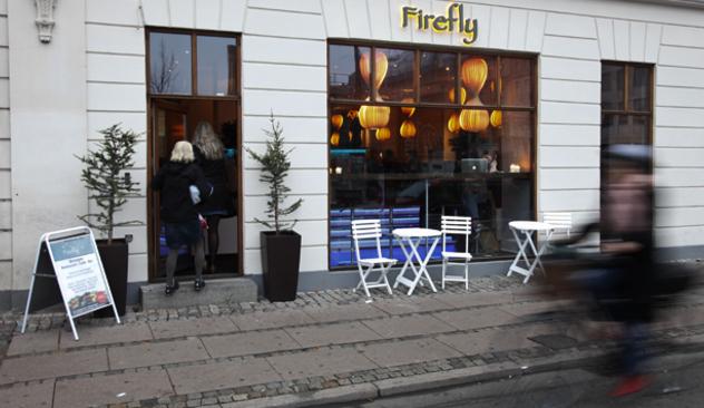 firefly_009.JPG